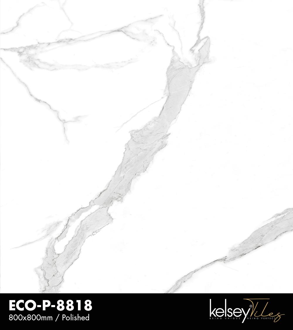 ECO-P-8817